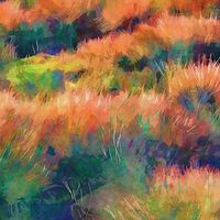 Print MOUNTAIN MEADOW 35 M by Todd Scott Anderson