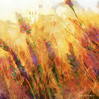 Print MOUNTAIN MEADOW 32 M by Todd Scott Anderson