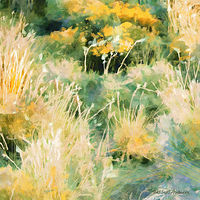 Print MOUNTAIN MEADOW 29 M by Todd Scott Anderson