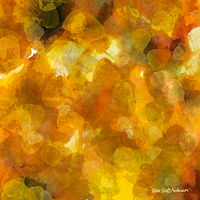 Print ASPEN LEAVES 31 M by Todd Scott Anderson