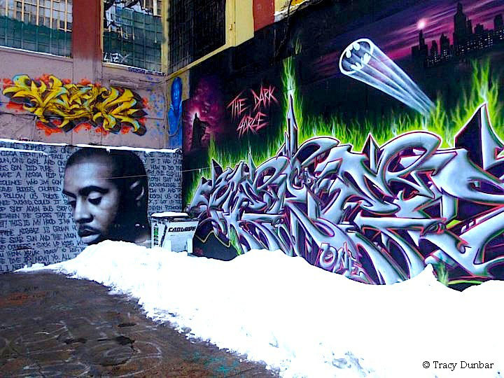 New York Graffiti by Tracy  Dunbar