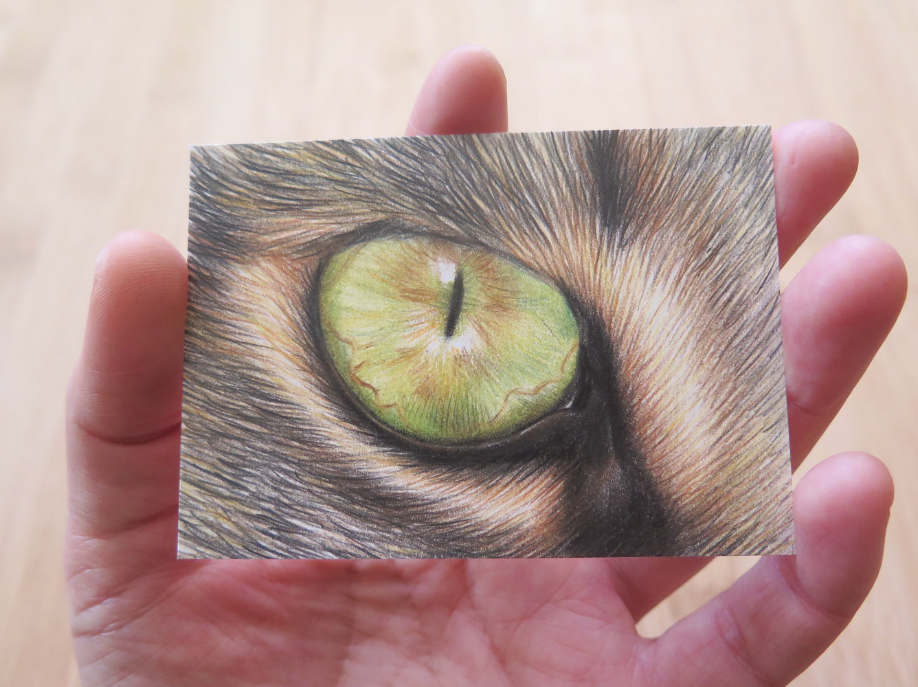 Dessin miniature ACEO - Chat aux yeux verts 2 by Genevieve Desy
