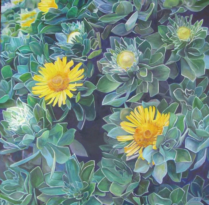 Painting alaskan succulent by Nancy Sharp