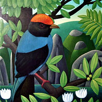 bird with orange cap  by Adrienne Noble