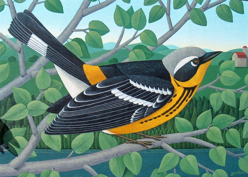 Magnolia   Warbler by Adrienne Noble