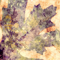 Print OAK LEAVES 6 M by Todd Scott Anderson