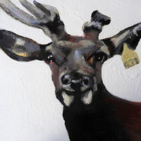 Acrylic painting WAPITI#2 by Edith dora Rey