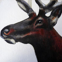 Acrylic painting WAPITI#3 by Edith dora Rey