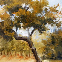 Painting Oak Tree Study by Barbara Haviland