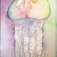 Watercolor Tiny 4x6 jellyfish watercolor: Jellyfish Curtain by Pamela Neswald
