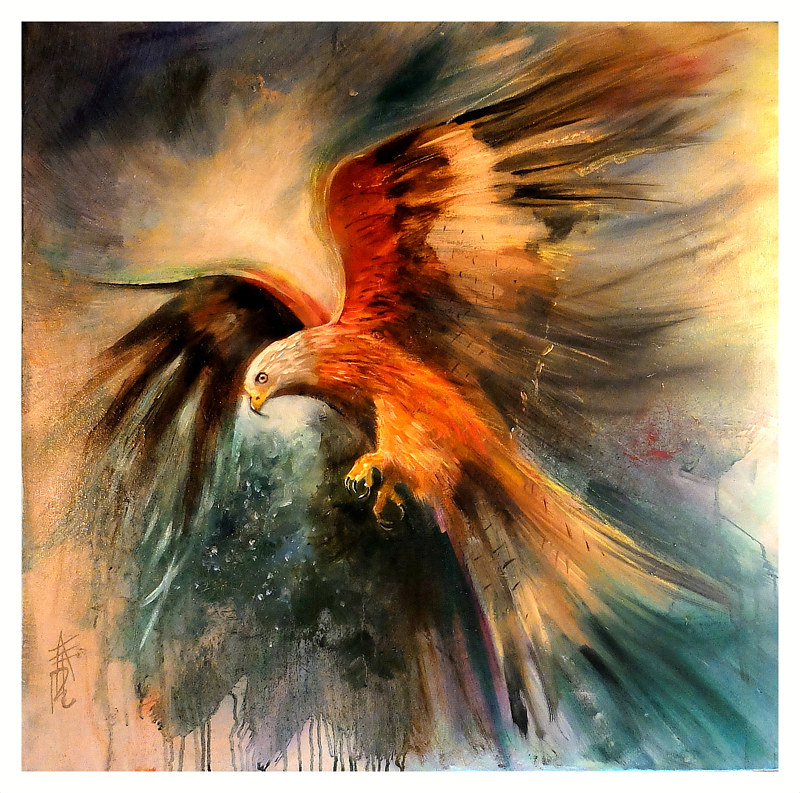 Red Kite Hovers, oil on box canvas 30x30 -001 by Anne Farrall Doyle