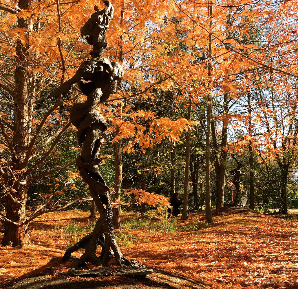 Smoking Root; 6 foot bronze, Grounds For Sculpture, NJ. by Jonathan  Hertzel