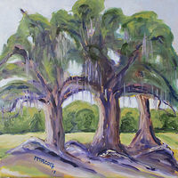 Oil painting Live Oak Trees in Cow Pasture Archer Florida Feb 6 plein air by Michelle Marcotte