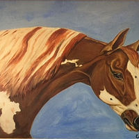 "Oil painting ""Appaloosa"" by Gary Cheatham"