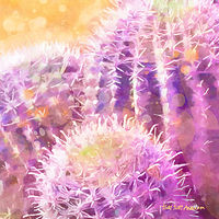 Print MOJAVE CACTUS 8 D copy by Todd Scott Anderson