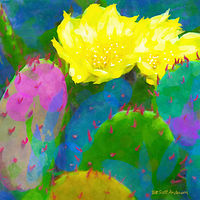 Print SONORA CACTUS 18 D by Todd Scott Anderson
