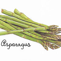 Asparagus by Susan Lynch