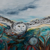 Snowy Owl over Teal by Cary Wyninger