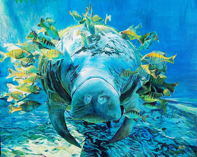 Painting Manatee by Nancy Sharp