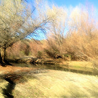 Arizona River by Tracy  Dunbar