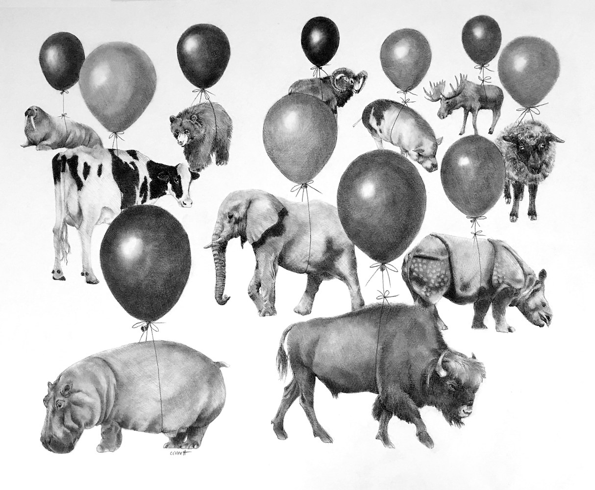 Drawing Balloon Festival by Ellen Cornett