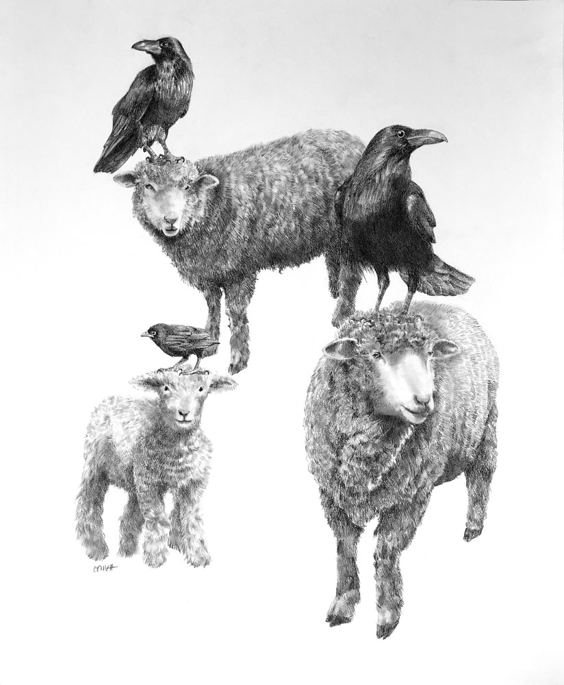 Drawing Sheep Herding by Ellen Cornett