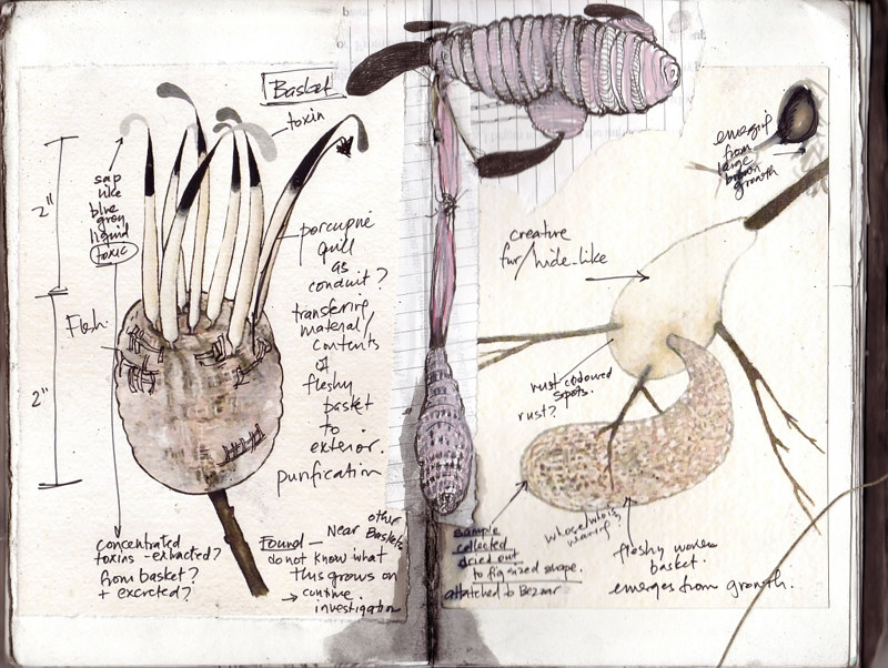Field notes from An Ecology of Feeling, 2010 by Tamara Rusnak