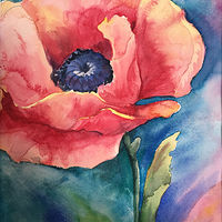 Poppy in Full Bloom by Betty Ann  Medeiros