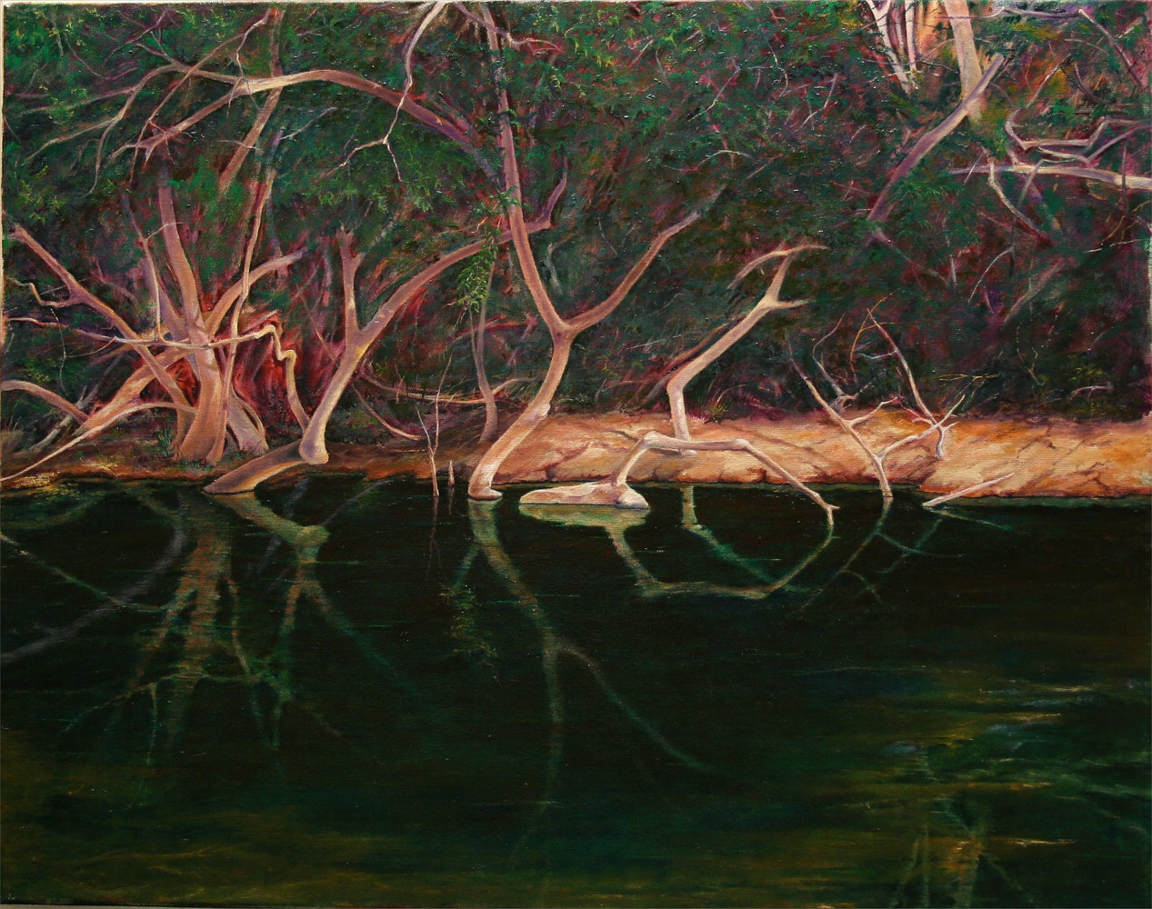 Reflections on the San Gabriel, San Gabriel Trail, Georgetown,Texas 22x28 by Gary Nowlin