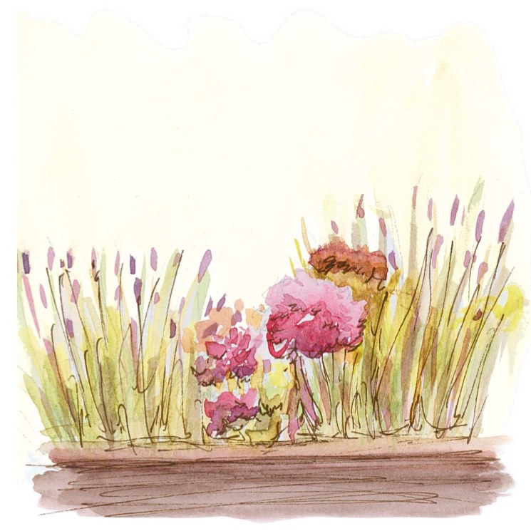 Watercolor Blooms and Tunes by Elaine Lauzon