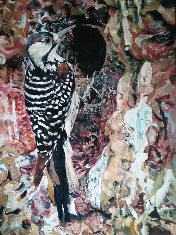 Painting Red Cockaded Woodpecker by Nancy Sharp