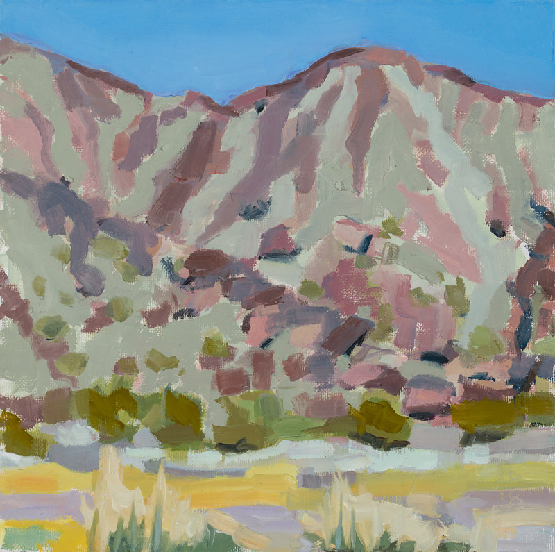 Oil painting Soda Mountain Creosote by Shawn Demarest