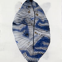 Drawing Broad Leaf by Julie Gladstone