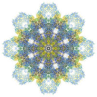 Print Hovig 18030 Mandala from Foresight #1 (1800x1800) by John Hovig