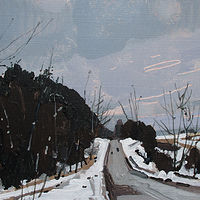 Acrylic painting Post Storm Road by Harry Stooshinoff