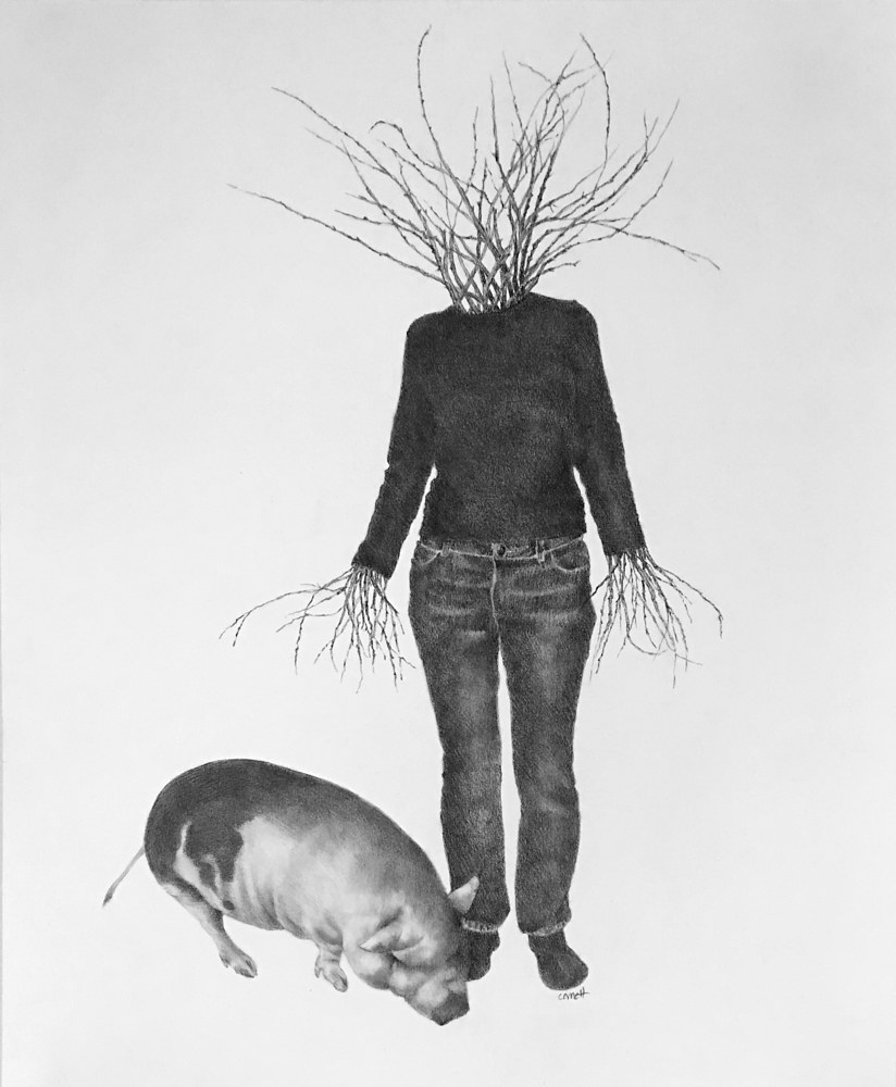 Drawing Scarecrow with Pig by Ellen Cornett