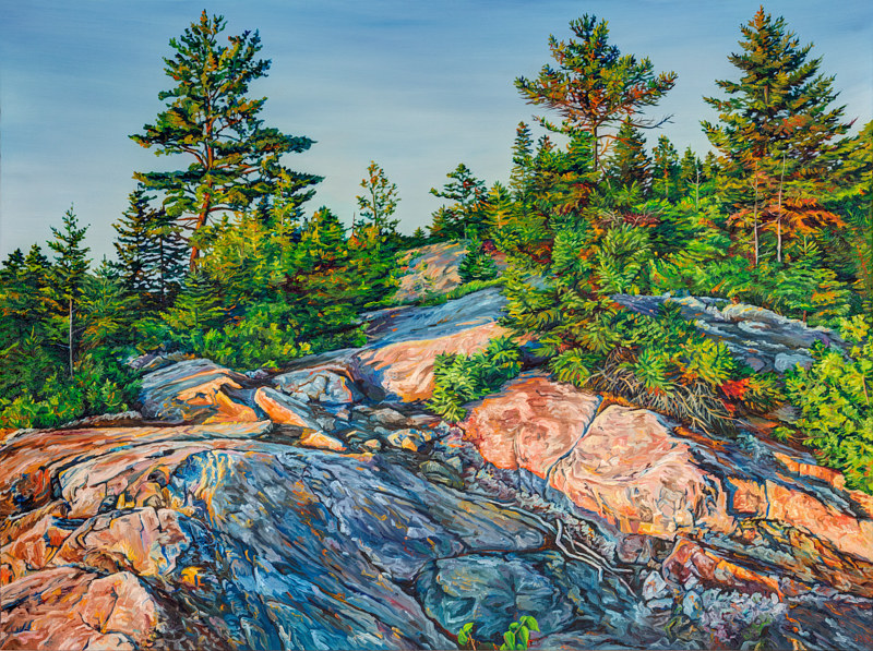 Oil painting The Climb Above Sam Orr's Pond by Michael McEwing