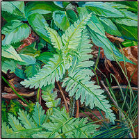 Oil painting Furbish's Lousewort by Michael McEwing