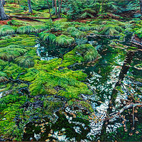 Oil painting Vernal Pool at Chocolate Cove by Michael McEwing