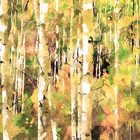 Print ASPENS 19 M by Todd Scott Anderson