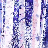 Print ASPENS 21 M by Todd Scott Anderson