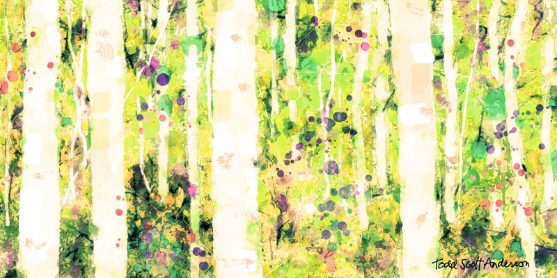 Print ASPENS 3 M by Todd Scott Anderson