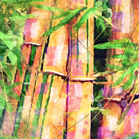 Print BAMBOO 11 T by Todd Scott Anderson