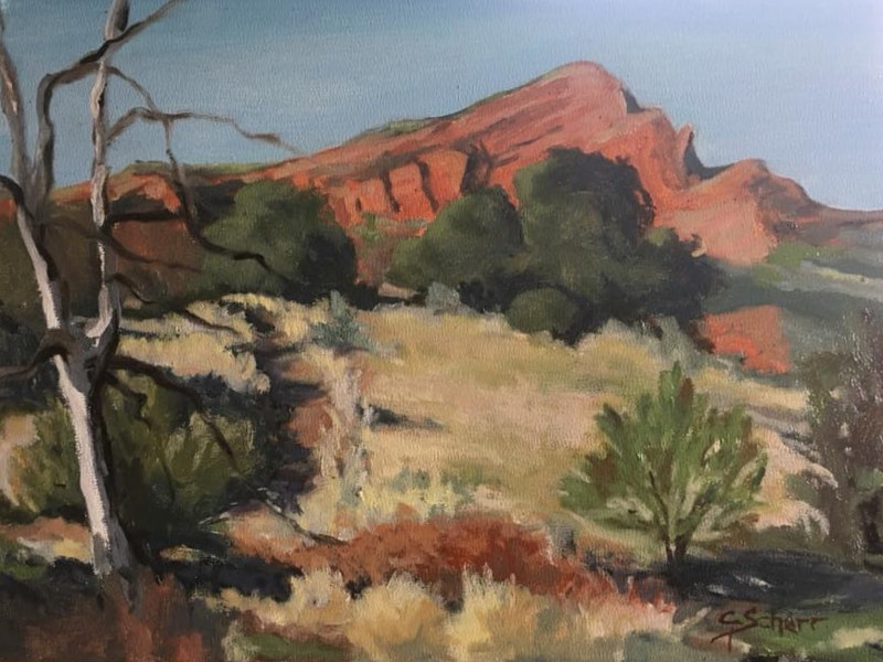 Oil painting Red Rocks at Irvine Ranch by connie scherr