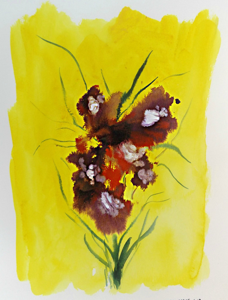 Drawing Floral 4 by David Neace