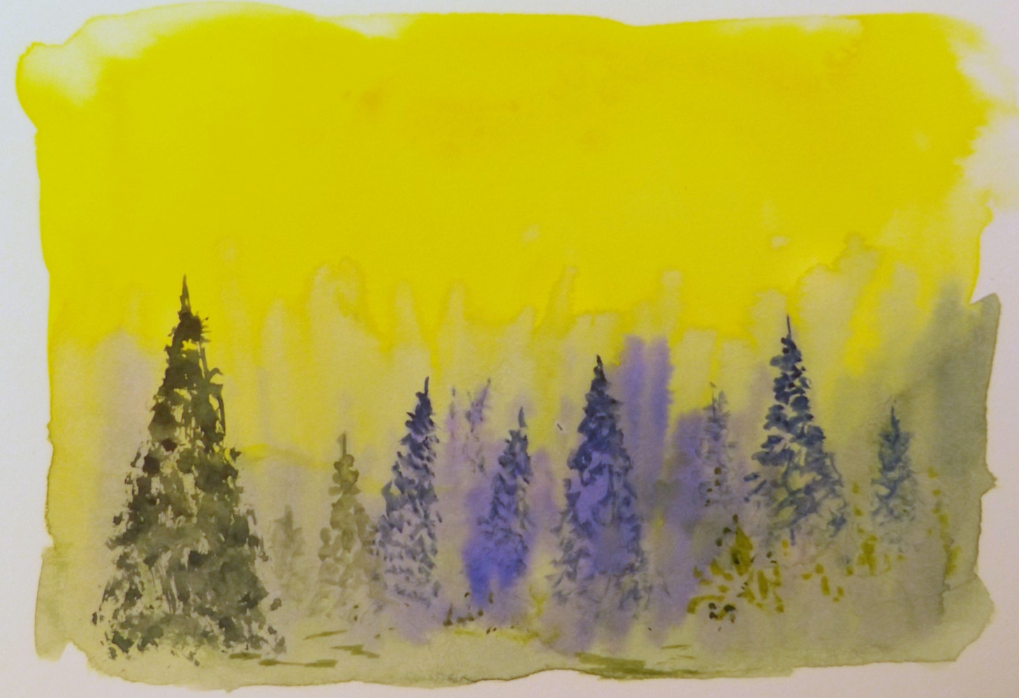 Drawing Misty Forest by David Neace