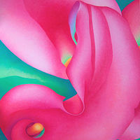 Acrylic painting Pink Callas  by Anne Popperwell