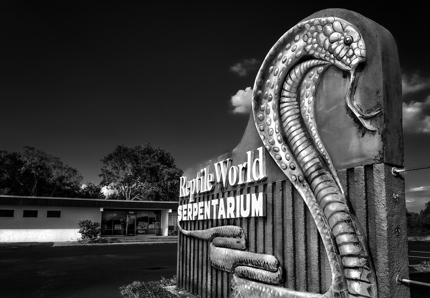 Reptile World Serpentarium - US 192  (PL52_7294BW) by Gary Jones