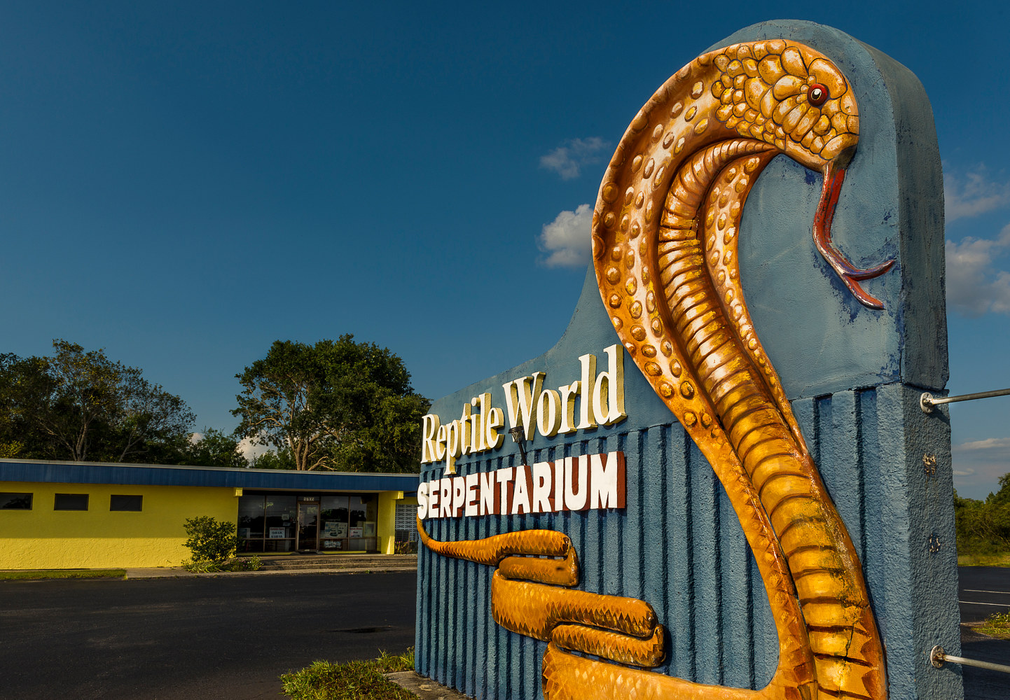 Reptile World Serpentarium - US 192  (PL52_7294C) by Gary Jones