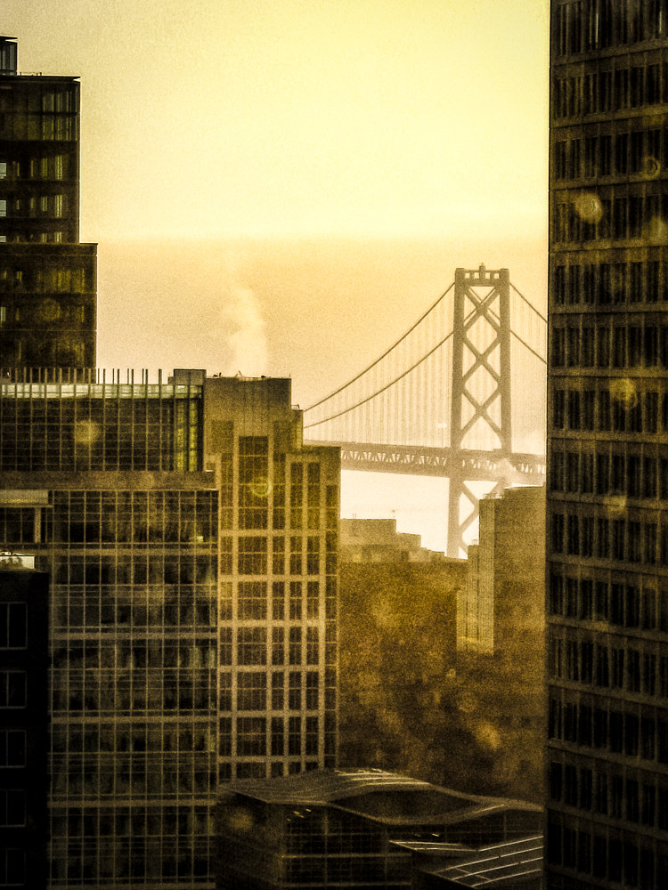 Morning Light-San Francisco (PL14_0028BWT) by Gary Jones